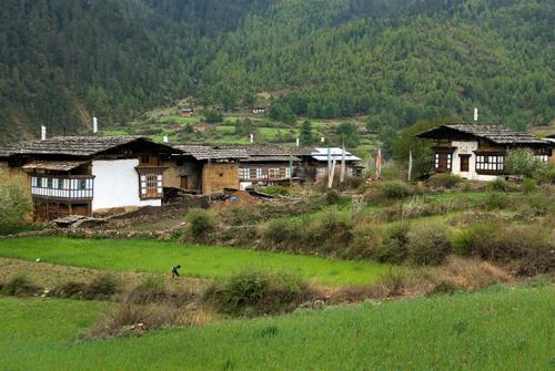 Central Bhutan & Haa valley tour