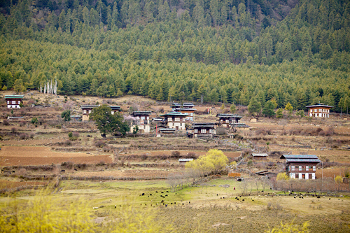 Bhutan Interior Highlands Tour with hiking Thimphu and Bumthang